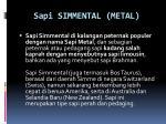 sapi simmental metal