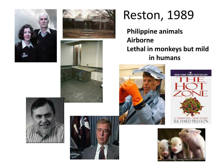 Reston, 1989