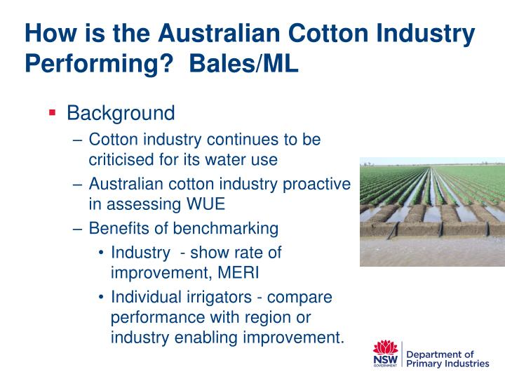 How is the australian cotton industry performing bales ml