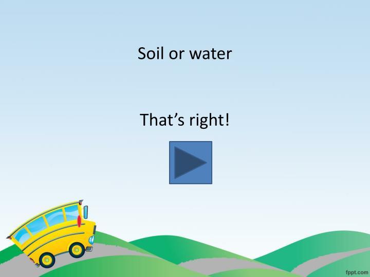 Soil or water