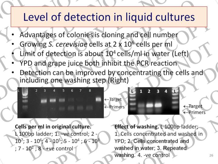 Level of detection in liquid cultures
