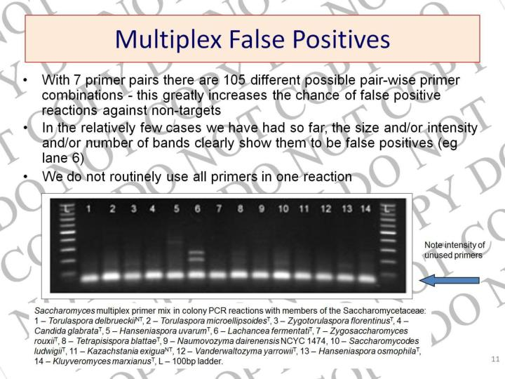 Multiplex False Positives