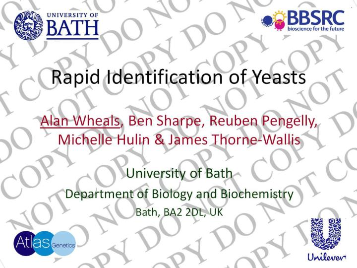 Rapid Identification of Yeasts