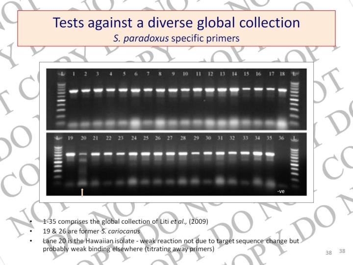 Tests against a diverse global collection