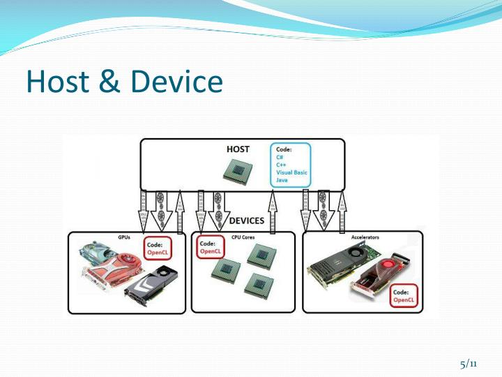 Host & Device
