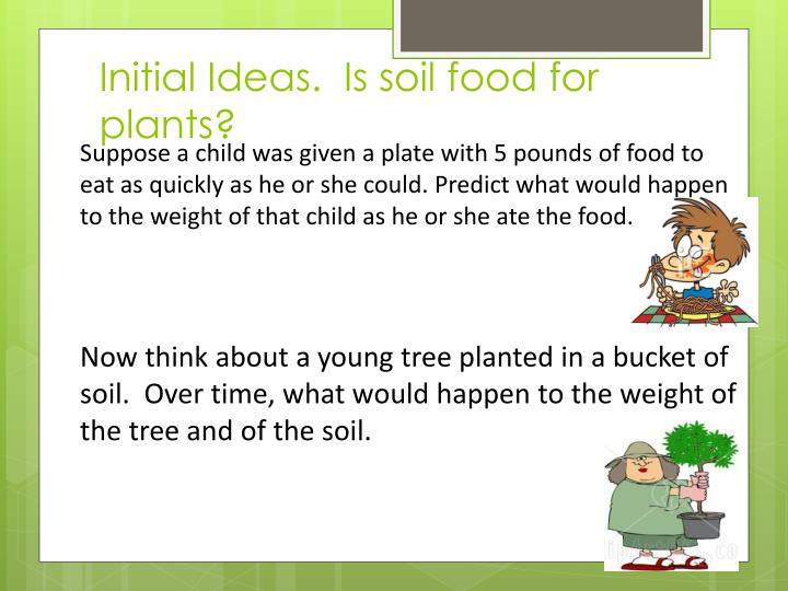 Initial Ideas.  Is soil food for plants?