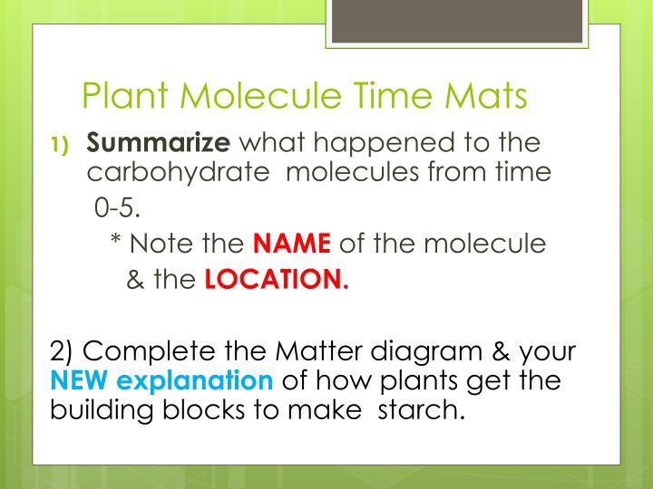 Plant Molecule Time Mats