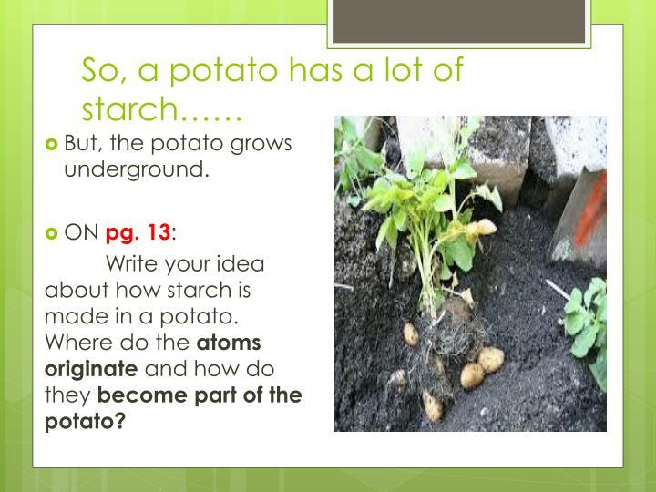So, a potato has a lot of starch……