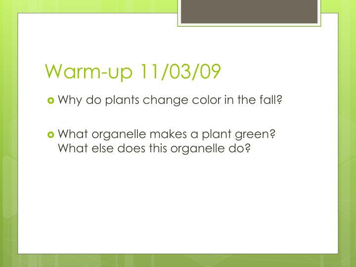 Warm-up 11/03/09