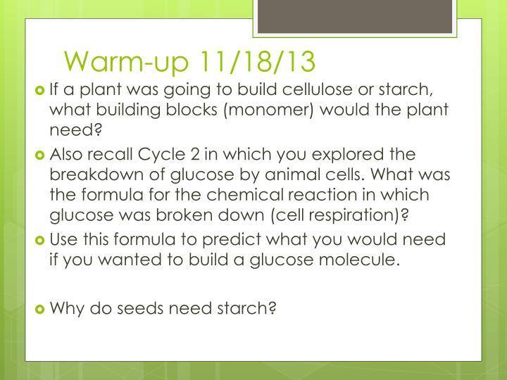 Warm-up 11/18/13