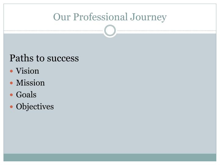 Our professional journey2