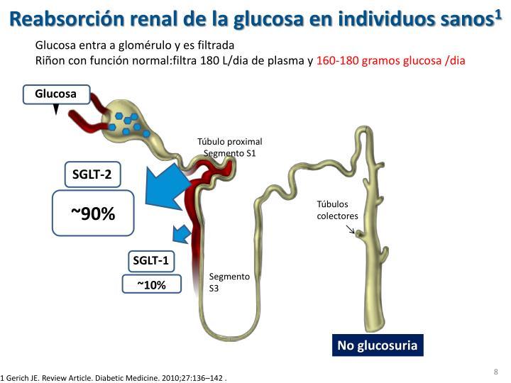 PPT - Inhibidores de SLGT-2 (Glucosúricos) en el