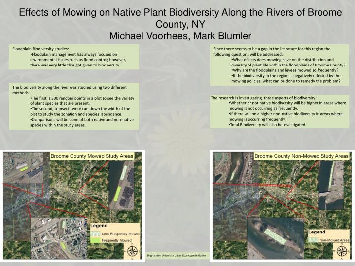 Effects of Mowing on Native Plant Biodiversity Along the Rivers of Broome