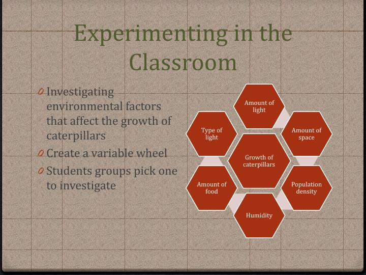 Experimenting in the Classroom