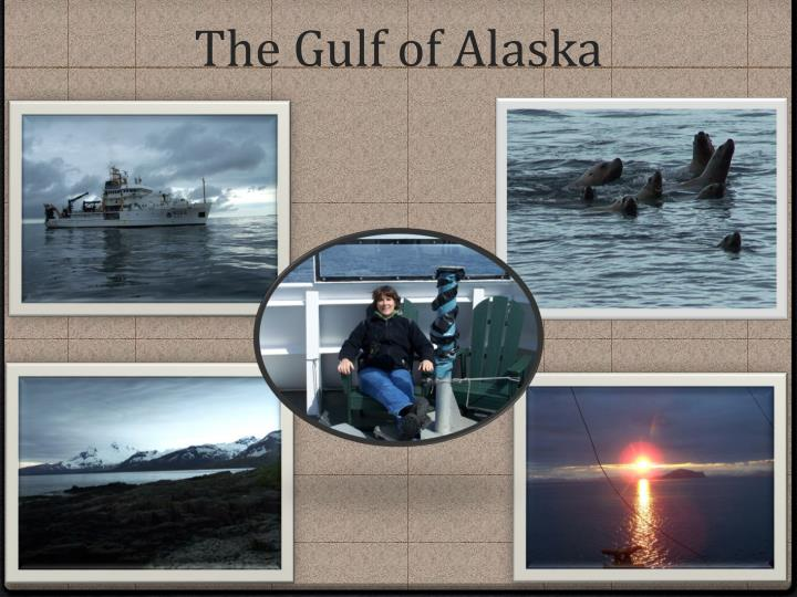 The Gulf of Alaska
