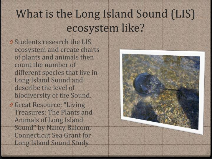 What is the Long Island Sound (LIS) ecosystem like?