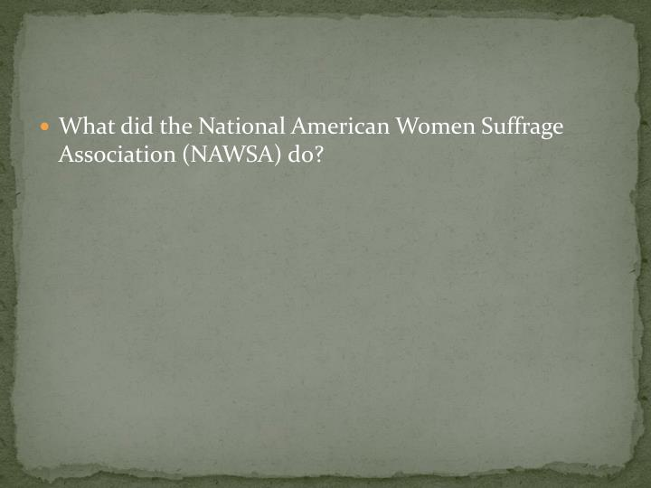 What did the National American Women Suffrage Association (NAWSA) do?