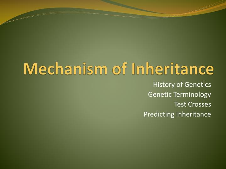 Mechanism of inheritance