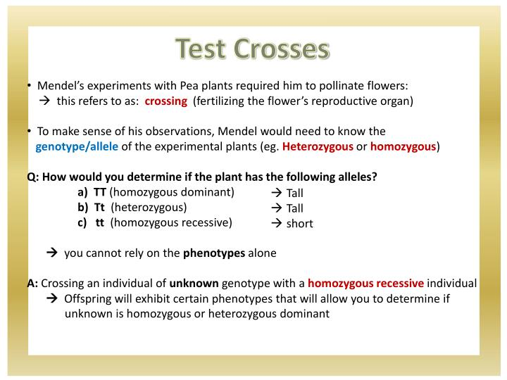 Test Crosses