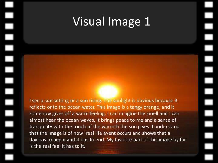 Visual Image 1
