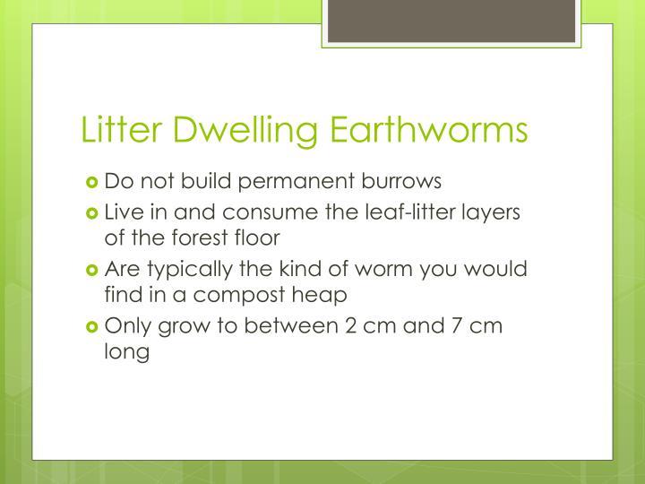 Litter Dwelling