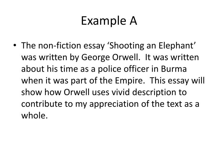 Essay on shooting an elephant
