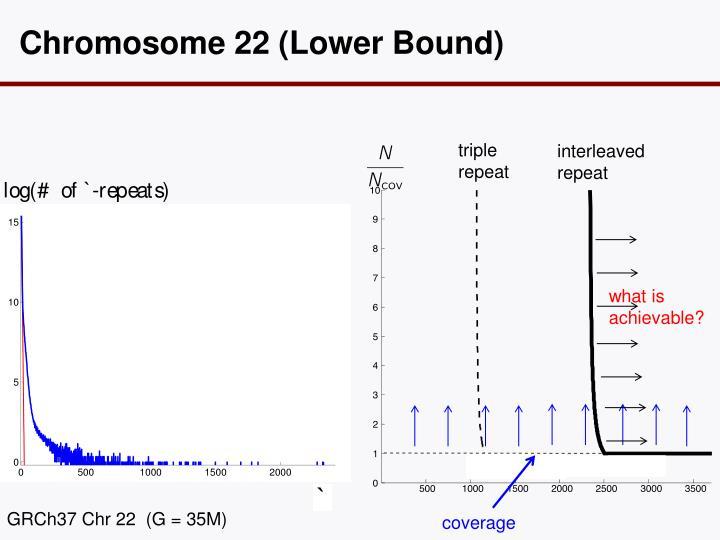 Chromosome 22 (Lower Bound)