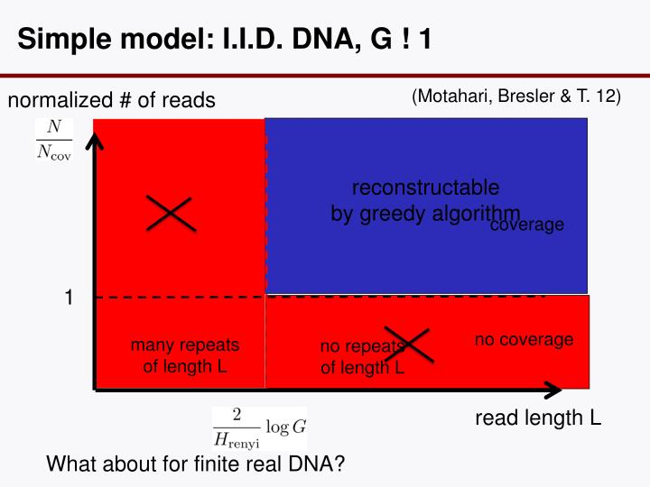 Simple model: I.I.D. DNA, G