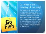 q what is the ministry of the laity