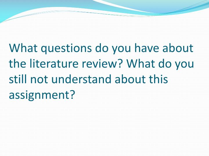 What questions do you have about the literature review? What do you still not understand about this assignment?