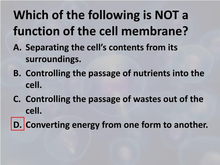 Which of the following is NOT a function of the cell membrane?