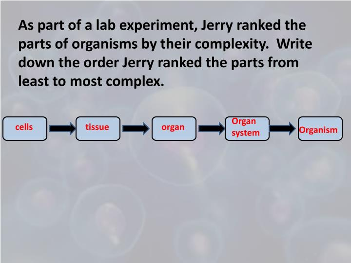 As part of a lab experiment, Jerry ranked the parts of organisms by their complexity.  Write down the order Jerry ranked the parts from least to most complex.