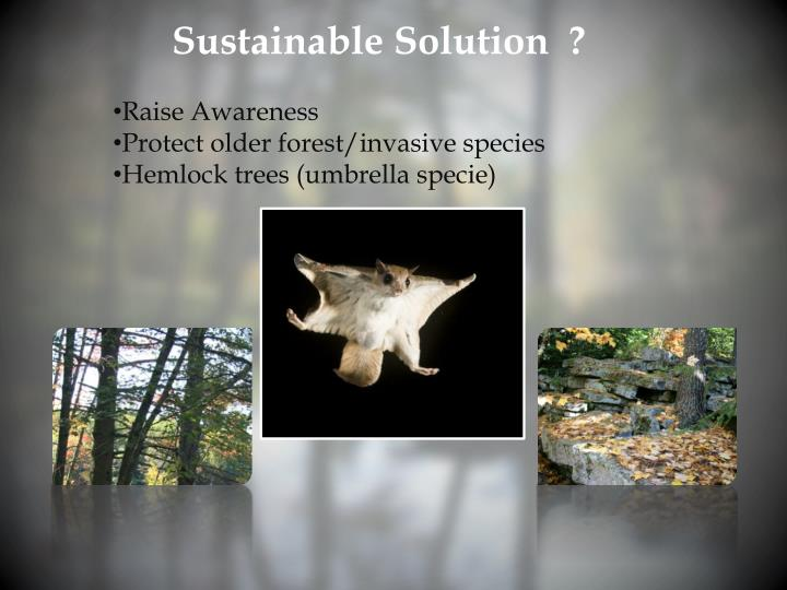 Sustainable Solution  ?