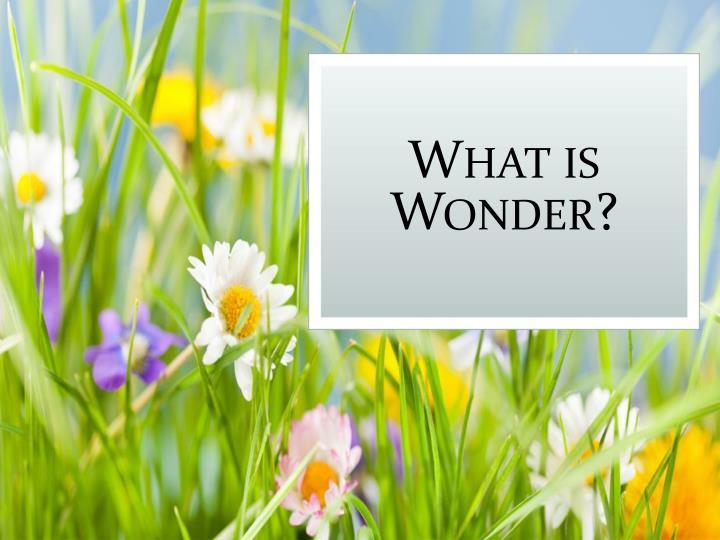 What is Wonder?