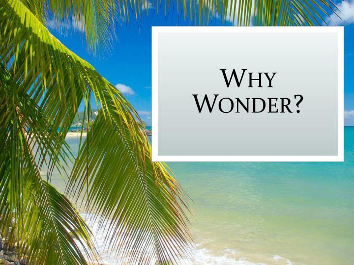 Why Wonder?