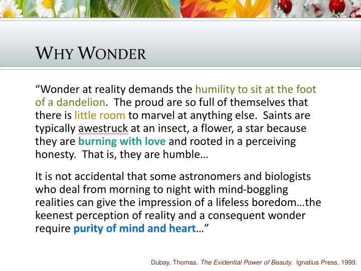Why Wonder