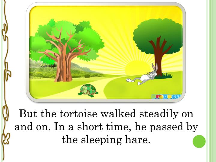 But the tortoise walked steadily on and on. In a short time, he passed by the sleeping hare.