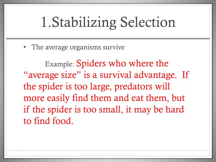 1.Stabilizing Selection