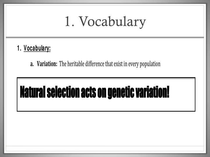 1. Vocabulary