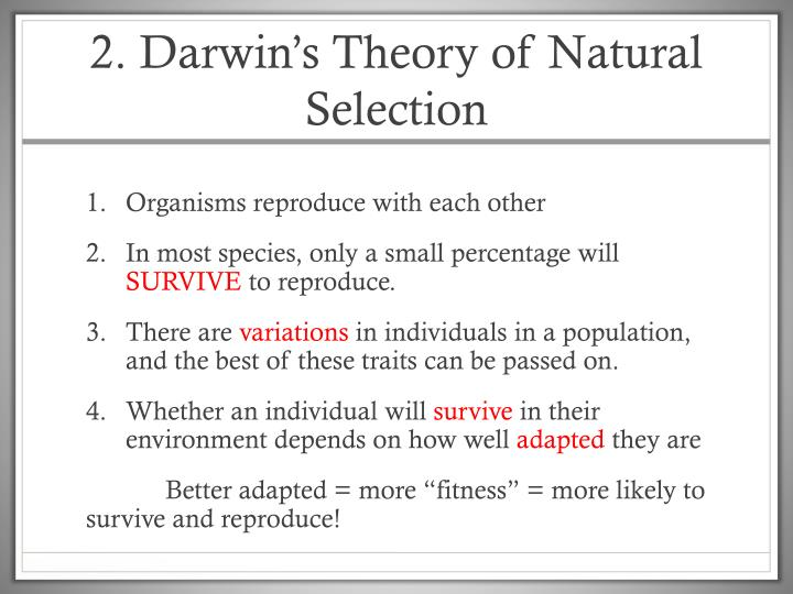 2. Darwin's Theory of Natural Selection