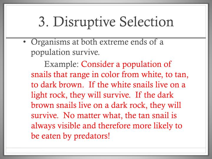 3. Disruptive Selection