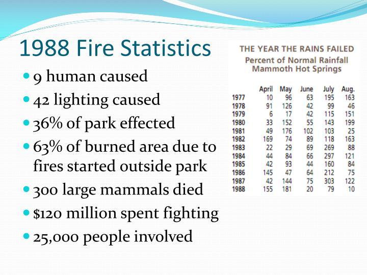 1988 Fire Statistics