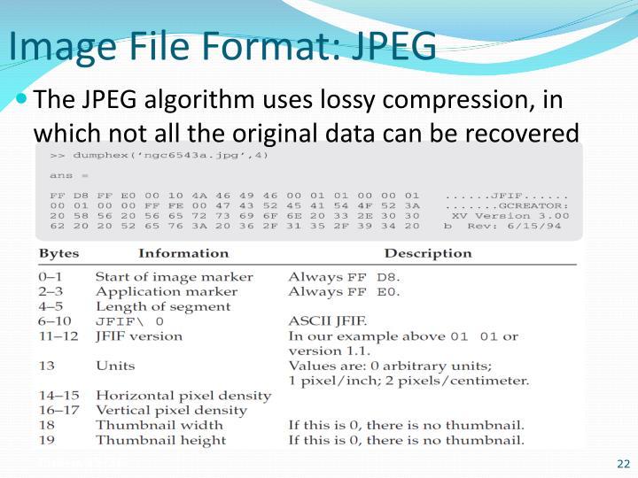 Image File Format: