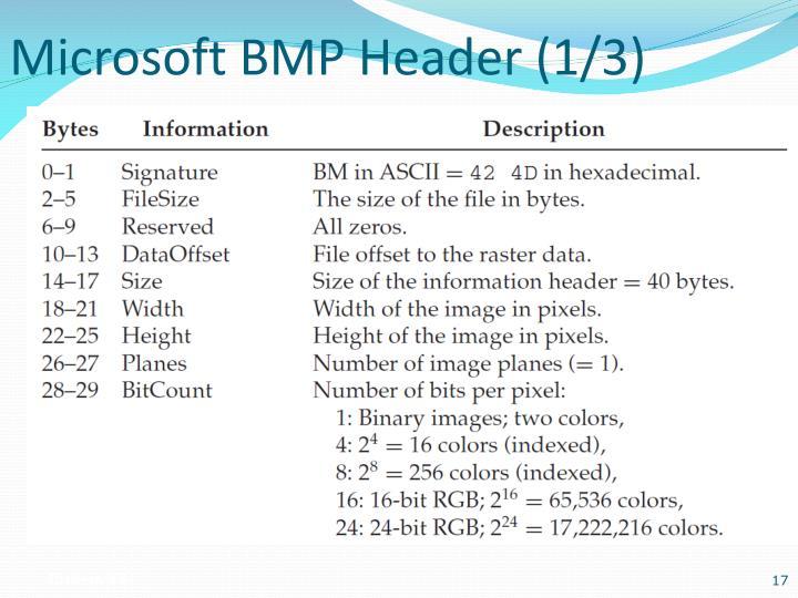 Microsoft BMP Header (1/3)