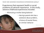 what are adverse childhood experiences aces