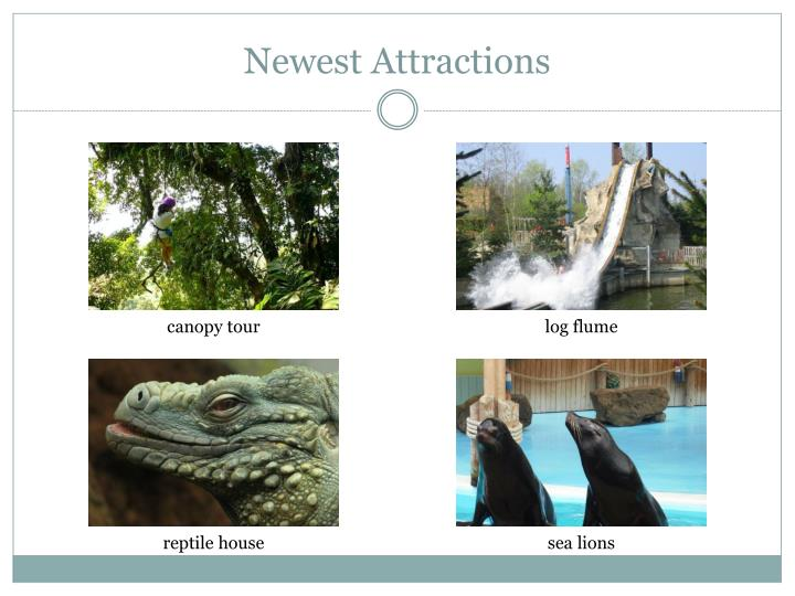 Newest attractions