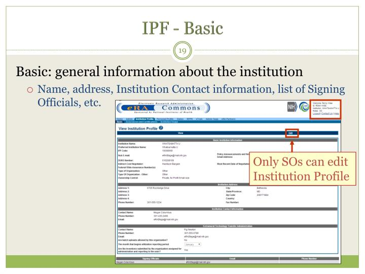 IPF - Basic