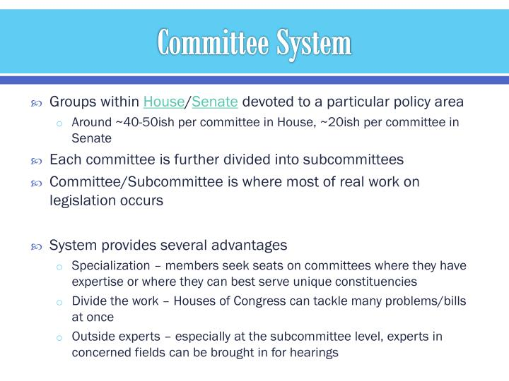Committee System