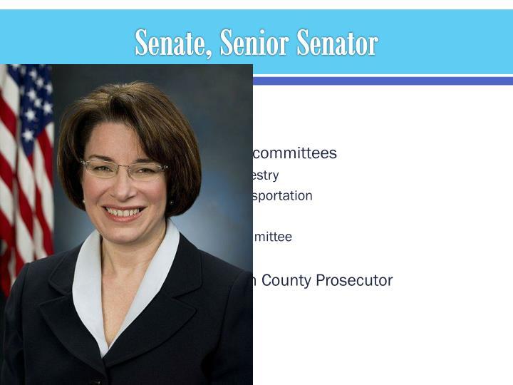 Senate, Senior Senator