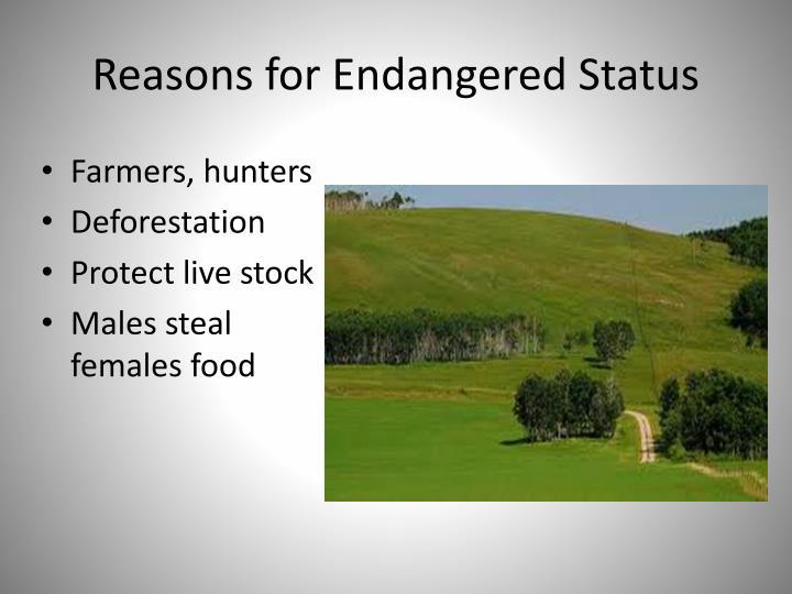 Reasons for Endangered Status